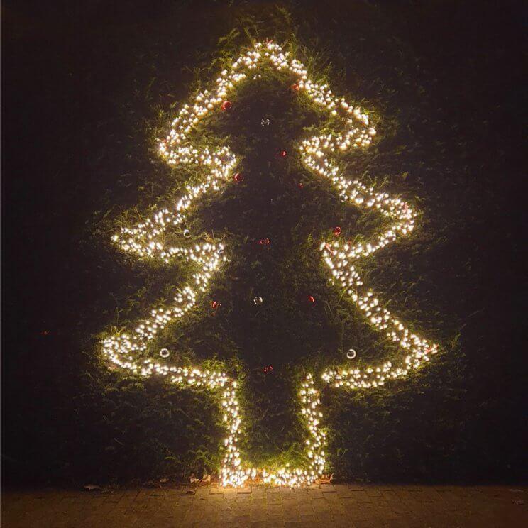 kerstboom van lampjes in de heg