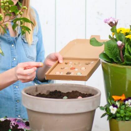 Cadeau ideeën voor Valentijnsdag. Bloompost heeft een leuk brievenbuscadeau: zaaibommetjes. Deze bolletjes stop je in de grond, een tijdje later groeien er biologische wilde bloemen.