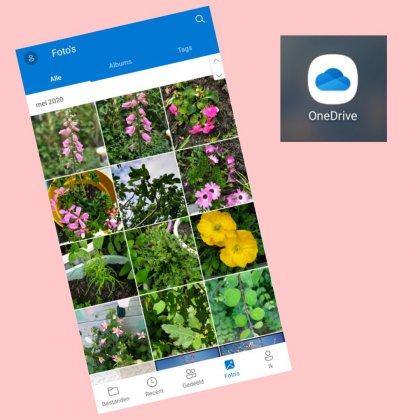 Zo maak ik een automatische foto backup om familie foto's veilig te bewaren