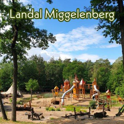 Landal Miggelenberg op de Veluwe: vakantiehuisjes in de natuur