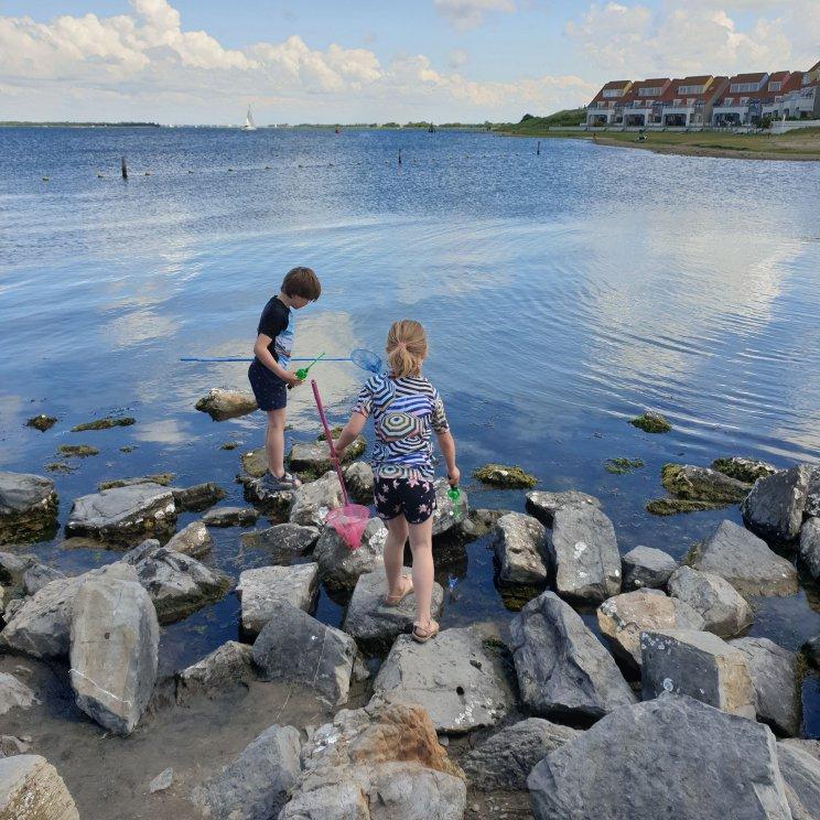 Landal Port Greve: kindvriendelijk vakantiepark in Zeeland vlakbij bij zee, op Schouwen Duiveland - krabbetjes vangen aan het Grevelingenmeer