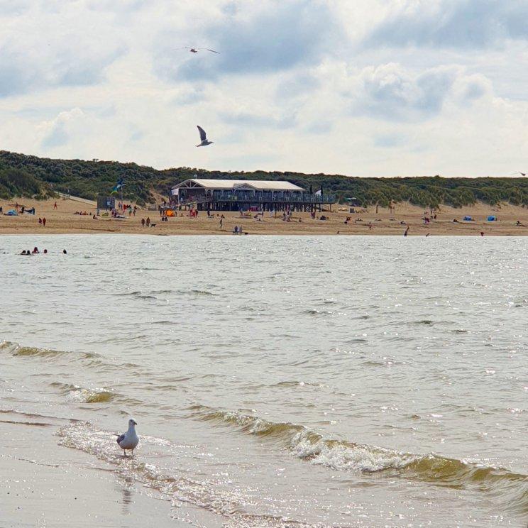 Noordzeestrand op de Brouwersdam