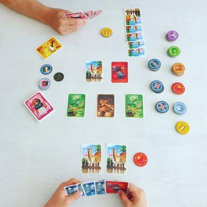 Jaipur spelletje voor tieners, leuk voor onderweg