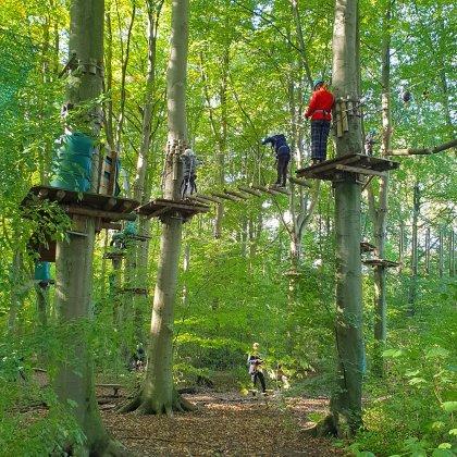 101 uitjes met tieners in Nederland en België. Klimbos Fun Forest