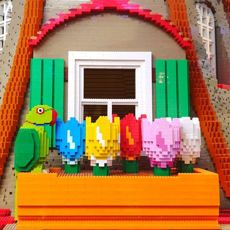 LEGO ideeën om te bouwen: tulpen en papegaai