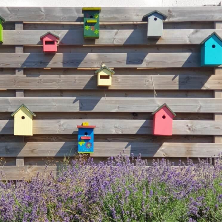 vogelhuisjes met lavendel