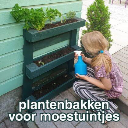 Plantenbakken voor moestuintjes: ideeën om te knutselen en uit de winkel