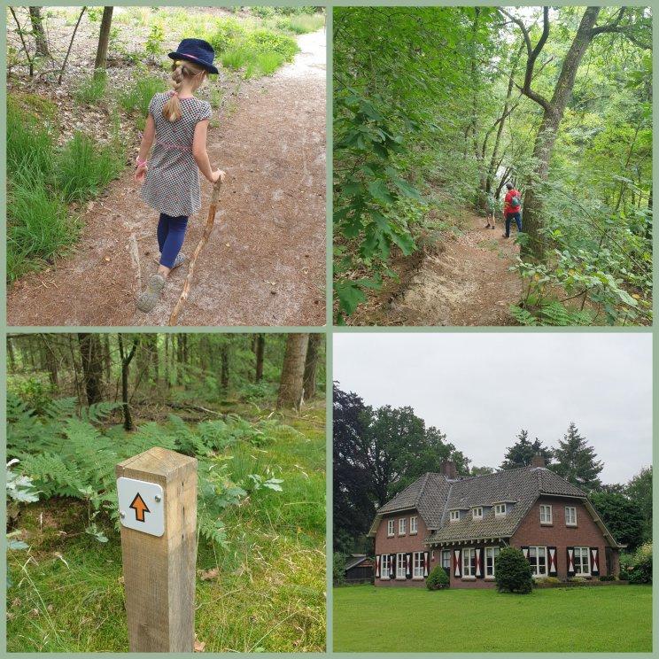 Huttopia de Roos: review van kindvriendelijke natuur camping in Overijssel . Naast en over de camping loopt een aantal wandelroutes, die je kunt volgen via de gekleurde paaltjes. Bij de receptie kun je van drie wandelroutes de kaartjes halen.