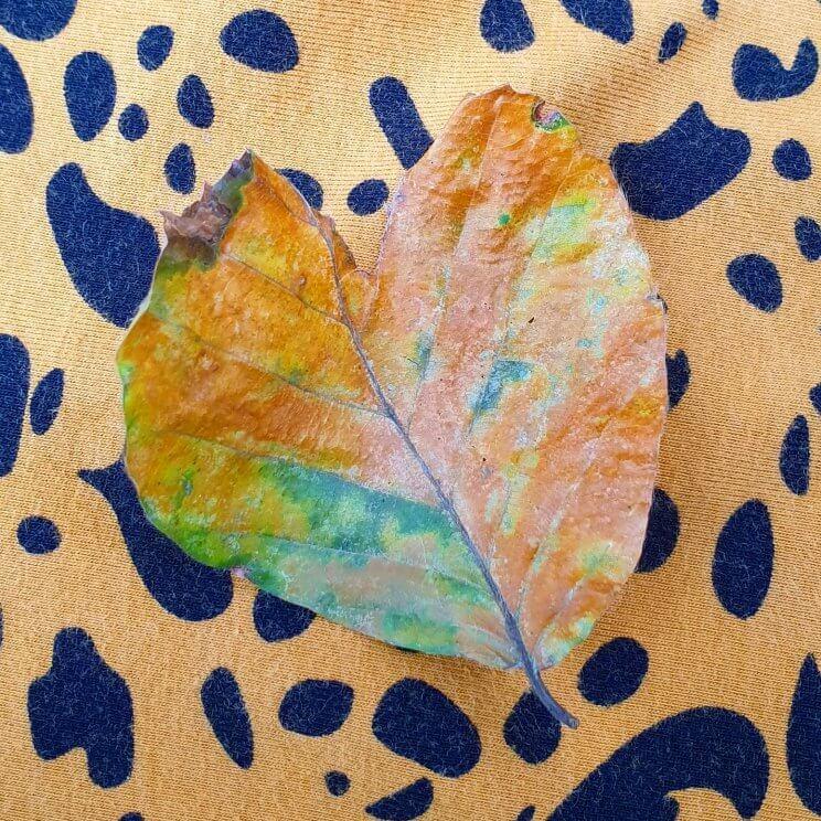 herfstblad in de vorm van een hartje